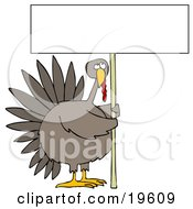 Clipart Illustration Of A Plump Turkey Bird Holding A Tall Blank White Sign