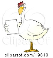 Clipart Illustration Of A Slim White Chicken Holding Out A Blank White Sign by Dennis Cox