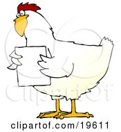 Clipart Illustration Of A Chubby White Chicken Holding A Blank White Sign In Front Of Its Chest