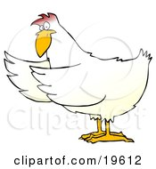 Clipart Illustration Of A White Chicken Holding Its Wings Out To The Side As If Presenting Something by djart