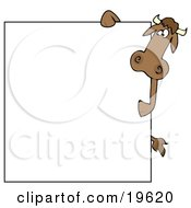 Clipart Illustration Of A Brown Cow Standing Behind A Big White Sign And Holding It Up by Dennis Cox