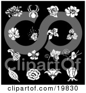 Clipart Illustration Of A Collection Of White Iris Rose Daisy And Tulip Flower Icons Over A Black Background
