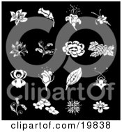 Clipart Illustration Of A Collection Of White Rose Grapes Dogwood And Iris Flower Icons Over A Black Background by AtStockIllustration