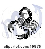 Clipart Illustration Of A Silhouetted Scorpion Over A Blue Scorpio Astrological Sign Of The Zodiac