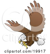 Clipart Illustration Of An American Bald Eagle In Flight Extending His Talons While Preparing To Grasp Prey