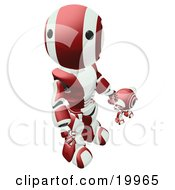Humanoid Maroon And White Ao-Maru Robot Looking Upwards While Holding Hands And Walking With A Small Webcam Spybot On A White Background