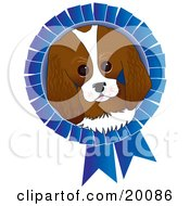 Adorable King Charles Spaniel Dog Face On A Blue Prize Ribbon For A Dog Show by Maria Bell
