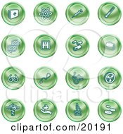 Clipart Illustration Of A Collection Of Green Icons Of Medicine Science And Biology by AtStockIllustration