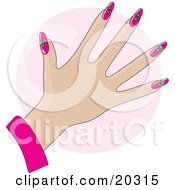 Womans Hand With Pink Nails Decorated With Daisy Floral Designs Over A Pink Circle