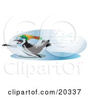 Clipart Illustration Of A Cool And Energetic Black And White Penguin Wearing Shades And A Hat Sliding Across An Iced Over Body Of Water With Speed On A Snowy Winter Day
