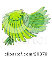 Large Majestic Bird With Long Green Feathers And Yellow Swirl Patterns