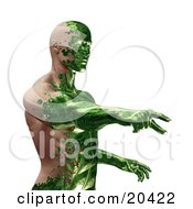 Clipart Illustration Of A Half Man Half Robot With Green Circuit Skin Covering His Human Skin Pointing Over A White Background