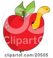 Cute Yellow Worm Peeking Out Of A Hole In A Red Apple