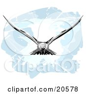 Clipart Illustration Of A Hunting Eagle In Flight His Wings Spanned by Tonis Pan