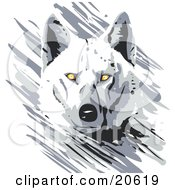 Poster, Art Print Of Majestic White Wolf With Bright Yellow Eyes