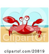 Clipart Picture Of A Friendly Red Crab Getting Sunshine On A Warm Sandy Beach
