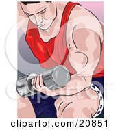 Muscular Caucasian Man Seated On A Bench And Doing Bicep Curls With A Dumbell Weight