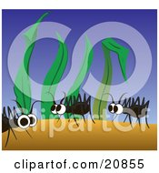 Clipart Illustration Of Three Cute Ants Walking In Tall Blades Of Grass Scrounging For Food