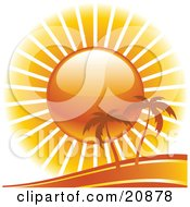 Clipart Illustration Of A Large Sun Shining Light Down On Two Isolated Palm Trees On A Beach by elaineitalia