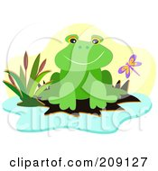 Royalty Free RF Clipart Illustration Of A Dragonfly By A Frog On A Lily Pad