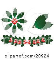 Collection Of Christmas Holly Leaves And Berries Over A White Background