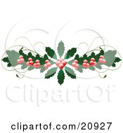 Flourish Of Holly Leaves And Berries With Vines Over A White Background