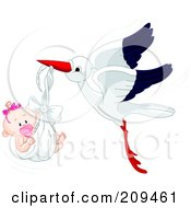 Cute Stork Flying A Baby Boy With A Pacifier In A Blanket