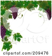 Royalty Free RF Clipart Illustration Of A Border Of Grape Vines And Purple Grapes by elaineitalia