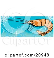 Clipart Picture Of A Swimming Shrimp In Clean Blue Waters