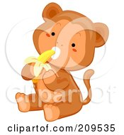 Cute Baby Monkey Sitting And Eating A Banana
