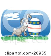 Clipart Picture Of An Exhuasted Bunny Rolling A Decorated Easter Egg On Grass