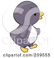 Royalty Free RF Clipart Illustration Of A Cute Baby Penguin Walking Right by BNP Design Studio