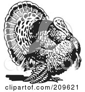 Royalty Free RF Clipart Illustration Of A Retro Black And White Thanksgiving Turkey Bird by BestVector #COLLC209621-0144