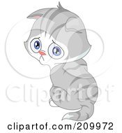 Royalty Free RF Clipart Illustration Of A Sad Gray Kitten Pouting And Looking Over His Shoulder by yayayoyo