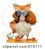 Cute Owl On A Branch Using Binoculars