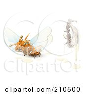 Royalty Free RF Clipart Illustration Of A Scary Orange Monster Fly Flying Away From A Cocoon by Leo Blanchette