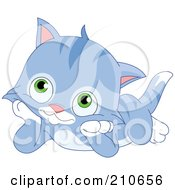 Cute Blue Striped Kitten Laying On His Tummy And Resting His Cheeks In His Paws