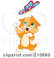Cute Ginger Kitten Up On His Hind Legs Playing With A Butterfly