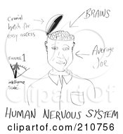 Poster, Art Print Of Black And White Sketch Of A Brain Hatch