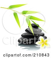 Royalty Free RF Clipart Illustration Of A Bamboo Branch Over Shiny Black Spa Stones And A Frangipani Flower