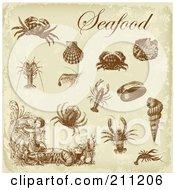 Digital Collage Of Brown Antique Seafood Design Elements Over Beige
