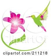 Humming Bird And Purple Flower
