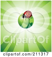 Royalty Free RF Clipart Illustration Of A Ladybug On A Green Globe Over A Shining Background by Eugene