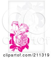 Pink Rose Background With Faint Flowers On White