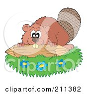 Cute Beaver Working On A Log