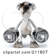 Royalty Free RF Clipart Illustration Of A 3d Jack Russell Terrier Pooch Facing Front With Heavy Barbells
