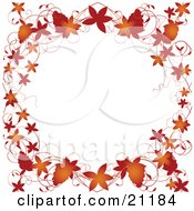 Autumn Leaves Grapevines And Grapes Bordering A White Background