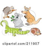 Digital Collage Of A Kiwi Bird Koala Kangaroo Crocodile And Hedgehog