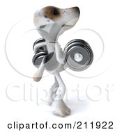 Royalty Free RF Clipart Illustration Of A 3d Jack Russell Terrier Pooch Facing Right With Heavy Barbells