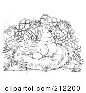 Royalty Free RF Clipart Illustration Of A Coloring Page Outline Of A Hen Nesting